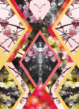 Kaleidoscpe floral