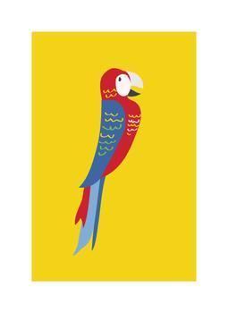 Primary Parrot