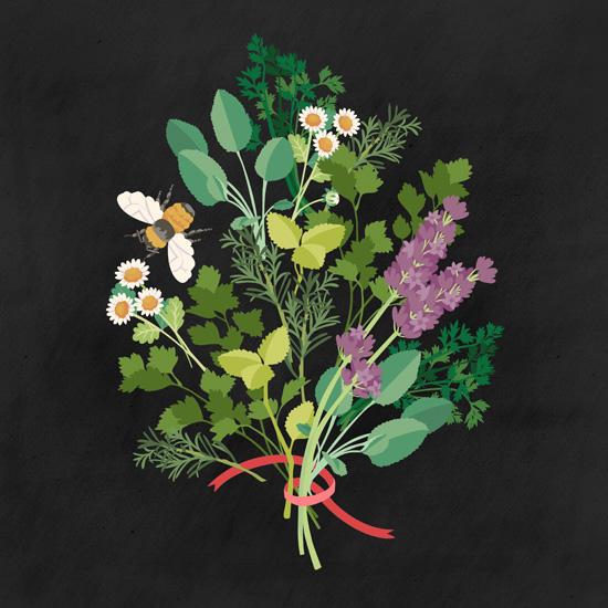 art prints - Herb Bouquet by Karla Pruitt