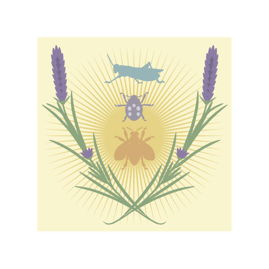 art prints - Lavender by TeeEm