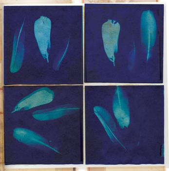 Feather sun prints (indigo)