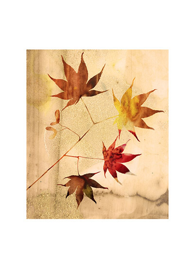 art prints - golden autumn by color bliss