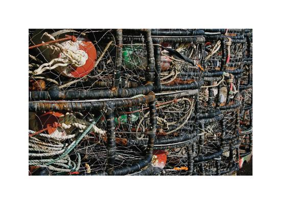 art prints - Fisherman's Wharf by AJD