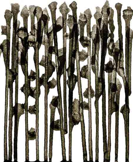 art prints - We by Kiana Mosley