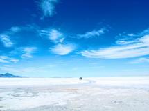 Snow Tracks by Amy Sarisky