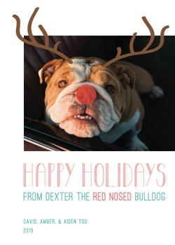 Red Nosed Furry Friend