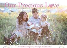 Precious Family Love by Pamela Rockett