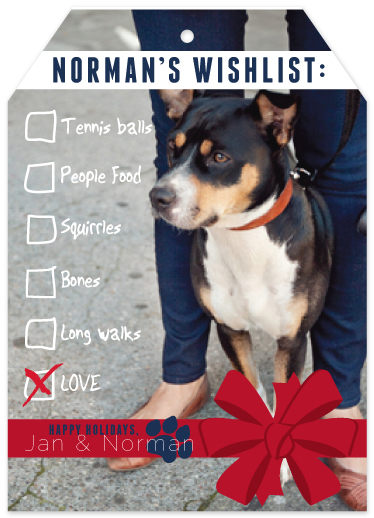 holiday photo cards - Pet Wishlist by Maren Kelly