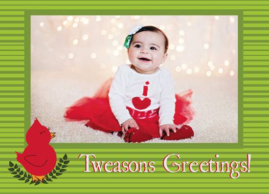 holiday photo cards - Tweasons Greetings by Annie Skrmetti