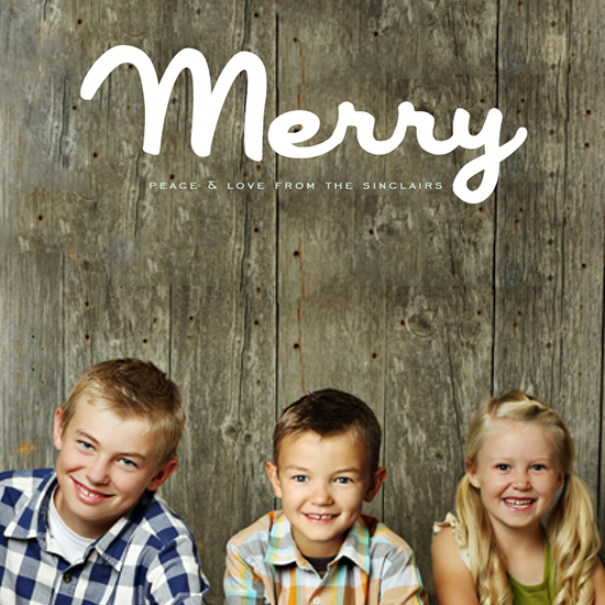 holiday photo cards - Merry Brush by Alex Elko Design
