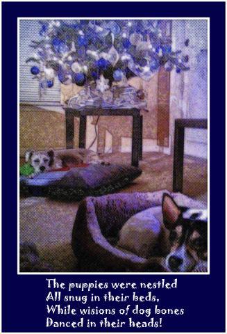 art prints - Visions of dog bones by Nancy Martin