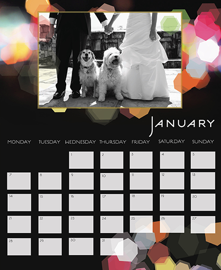 calendars - Blurred Lights by Shanna McNear