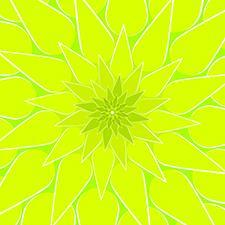 Dahlia-Green