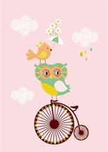 Baby Owl by Tamara Csengeri