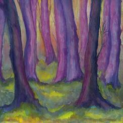 Dusky Forest