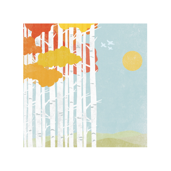 art prints - Birches In Fall by South City Press