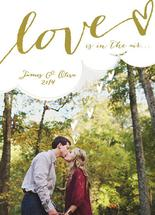 Love Is In The Air by Willow and Twig