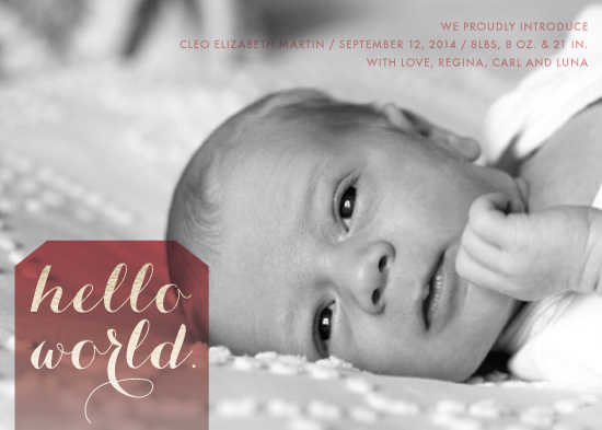 birth announcements - World Baby by Alison Michael