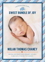 Sweet Bundle of Joy by Nichole Chaney