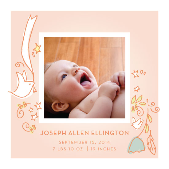 birth announcements - Doves by Peridot Design