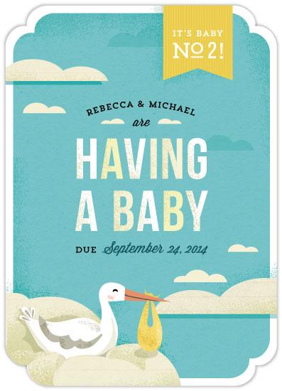 birth announcements - The Stork's Surprise by Lisa Schneller Bieser