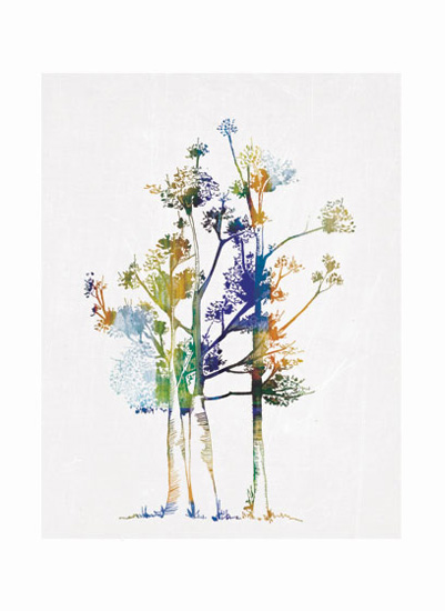 art prints - Trees of all seasons by DeSha Creative