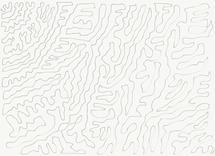 Endless swirl by Tina Ramchandani