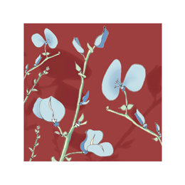 art prints - Blue Petals on Red Background by Michele Fritz