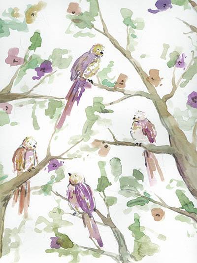 art prints - aquarel birds by Barbara Treszner