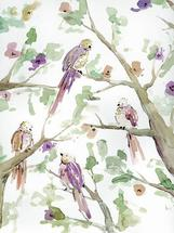aquarel birds by Barbara Treszner