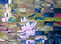 Waterlilies by Stefanie Bales