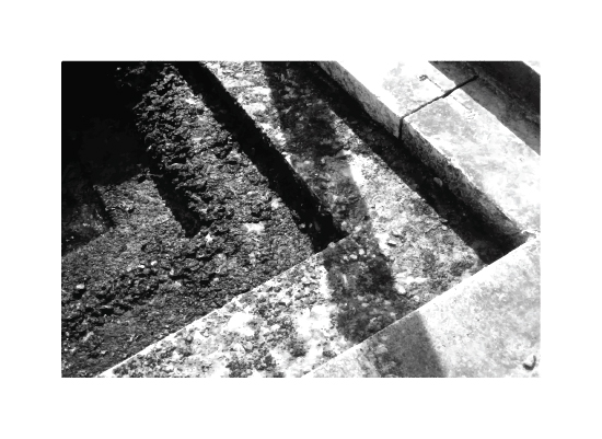art prints - Moss-chromed Levels by steph-m-shu