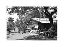 Life in Cambodia by dylcia barnhart