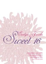 Dahlia Sweet Sixteen by Nina Hatch