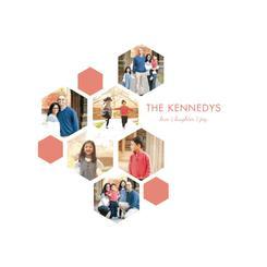 The Family Honeycomb
