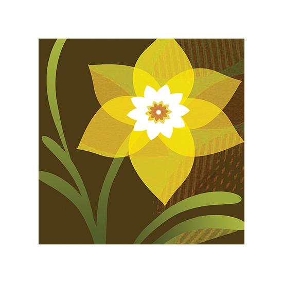 art prints - First  Spring Daffodil by Carol Hatcher