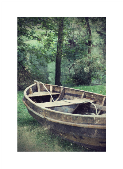 art prints - Water Penny by Gray Star Design