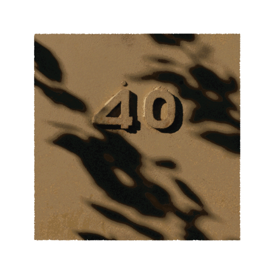 art prints - The Numbers 40 by Shannon