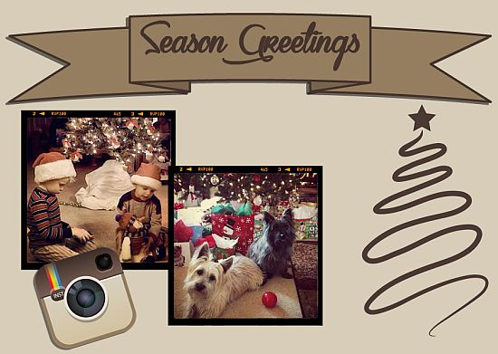 holiday photo cards - Instagram by Joanne Raymond