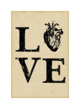 Anatomy Love