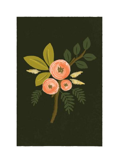 art prints - Botanical no.1 by Karidy Walker