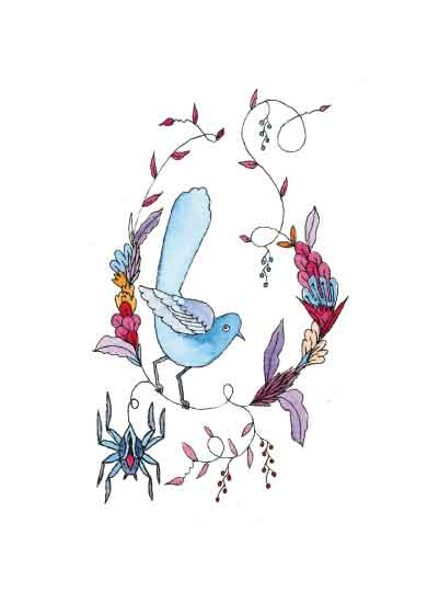 art prints - Spider and Bird by Clare Forrest