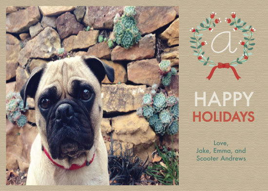 holiday photo cards - Elegant Textures by Rachel Osborne