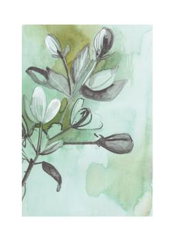 Botanical Sketch in Green