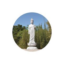 The Buddha Series 04