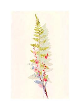 Spring Fern and Flowers