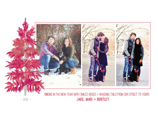 holiday photo cards - on our street by Megan Spinder