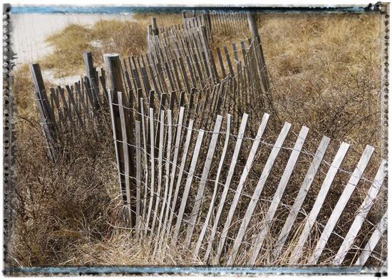 art prints - Sand Dune Fence by Kevin Kampwerth