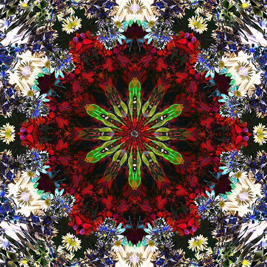 art prints - Evolve & Awaken by Rachel Mense