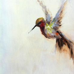 the humble hummingbird